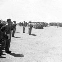 30-Parada, prawdopodobnie Quassasin Egipt4