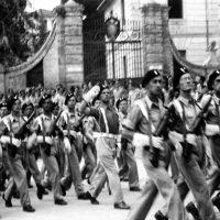 32-Parada, prawdopodobnie Quassasin Egipt2