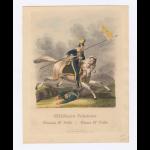 Ułan 3 pułku ułanów. Heideloff, Nicolaus Innocentius Wilhelm Clemens von, 1761-1837 (artist) Campe, Friedrich, 1777-1846 (publisher) Fleischmann, Andreas, 1811-1878